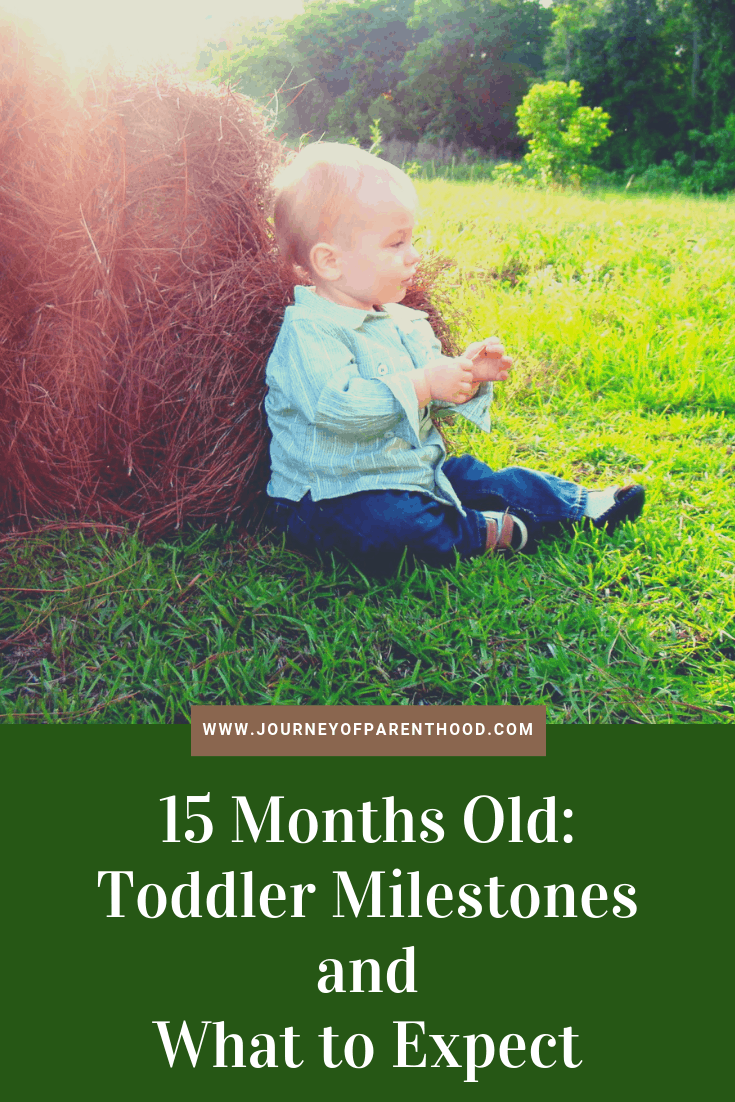 15 months old toddler milestones and what to expect