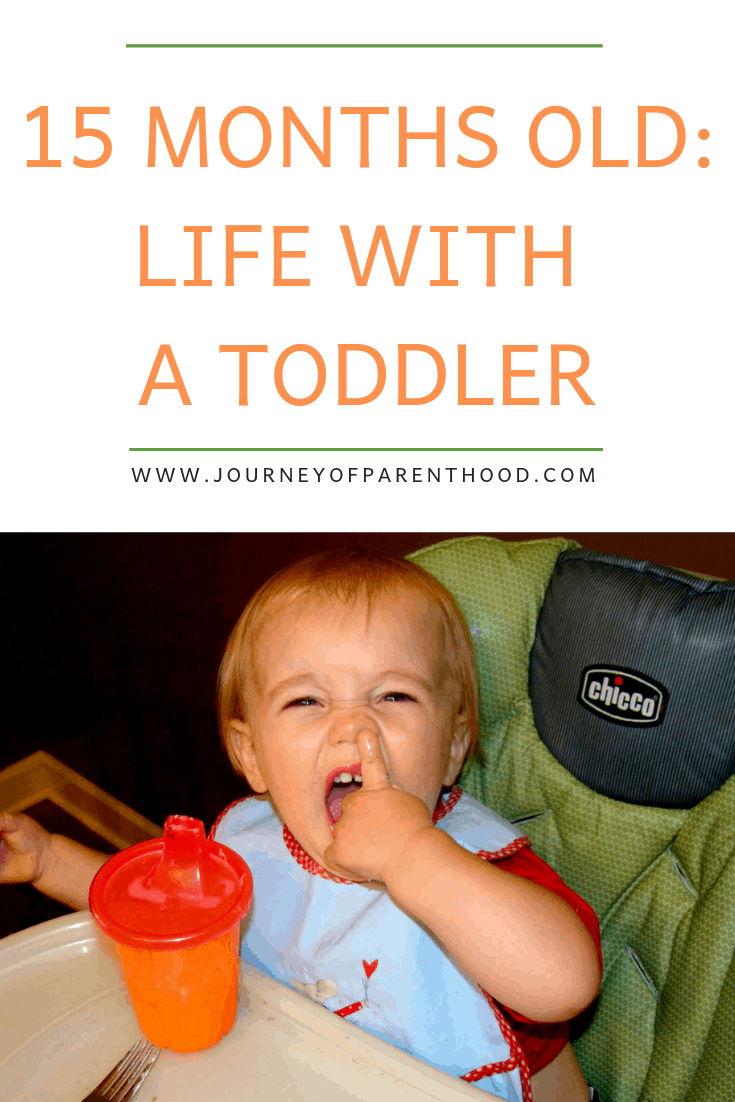 15 months old life with a toddler