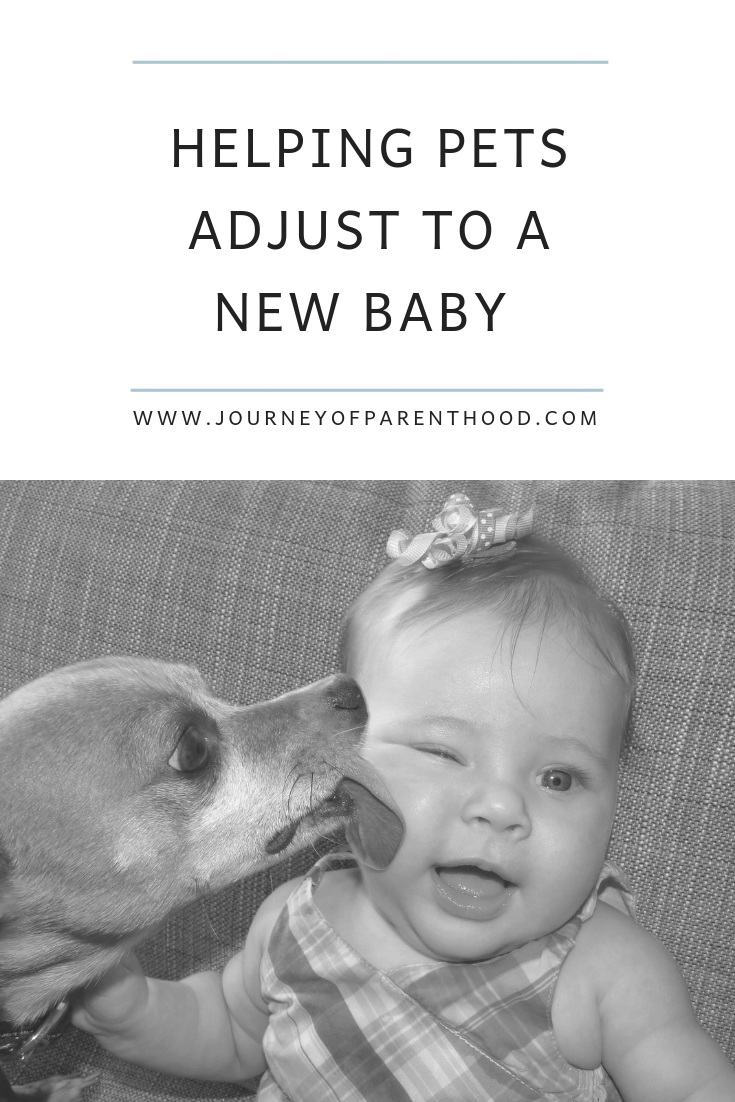 helping pets adjust to new baby