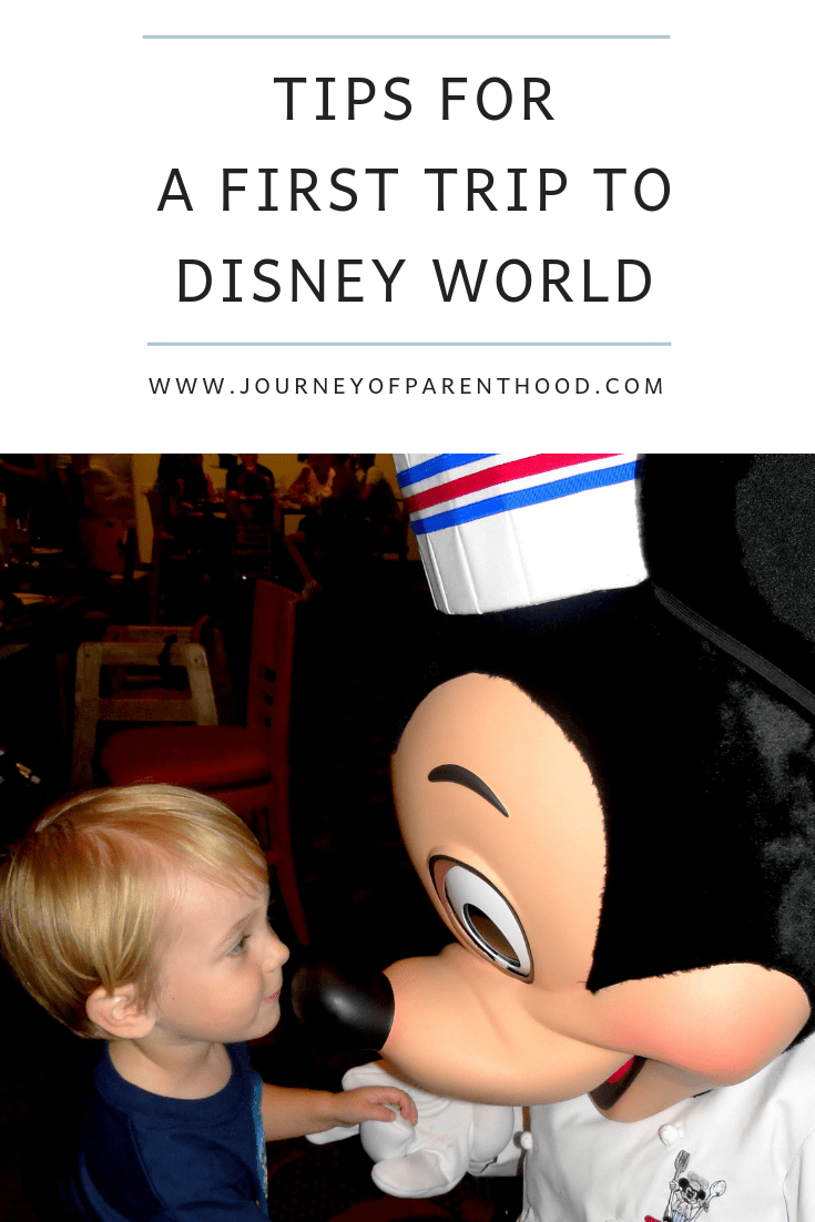 first trip tips for Disney World