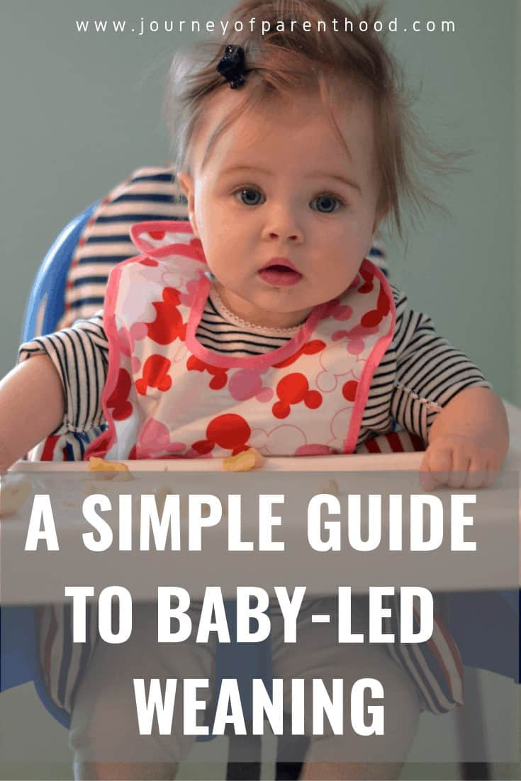 simple guide to baby led weaning