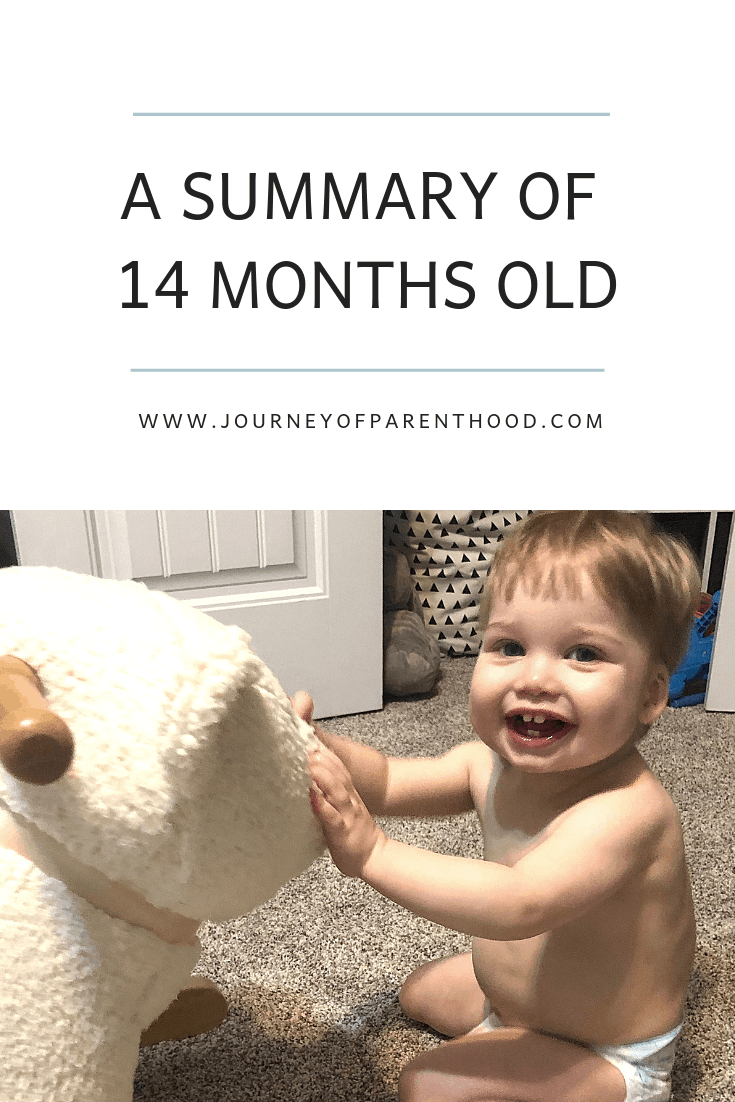 a summary of 14 months old