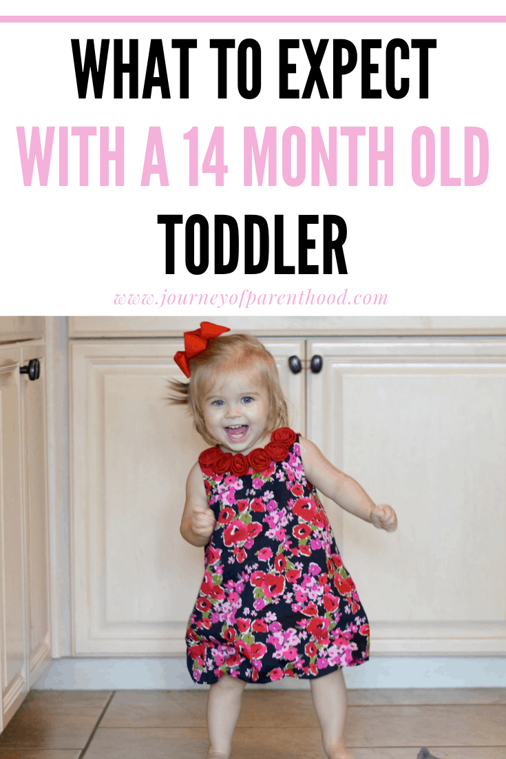 what to expect with a 14 month old toddler