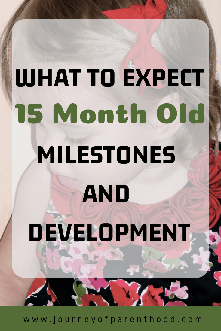 what to expect 15 months old milestones and development
