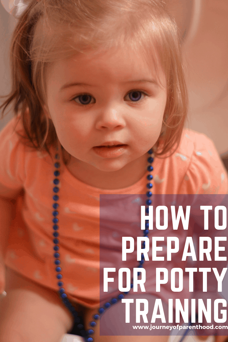 preparing for the potty