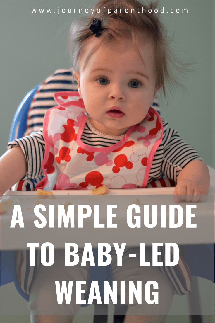 A Simple Guide to Baby-Led Weaning