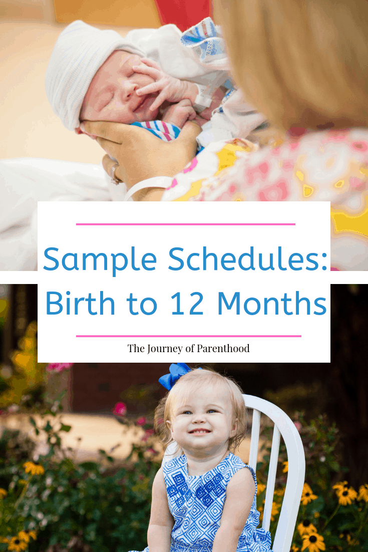 pinterest image birth to 12 months schedule