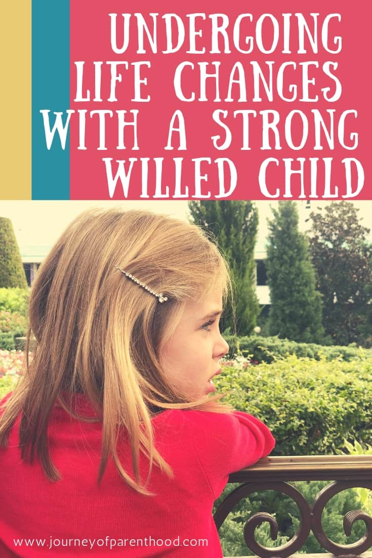 understanding life changes with a strong willed child