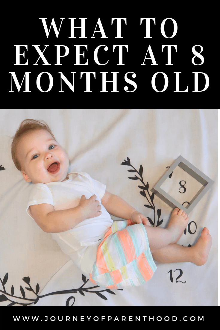 what to expect at 8 months old