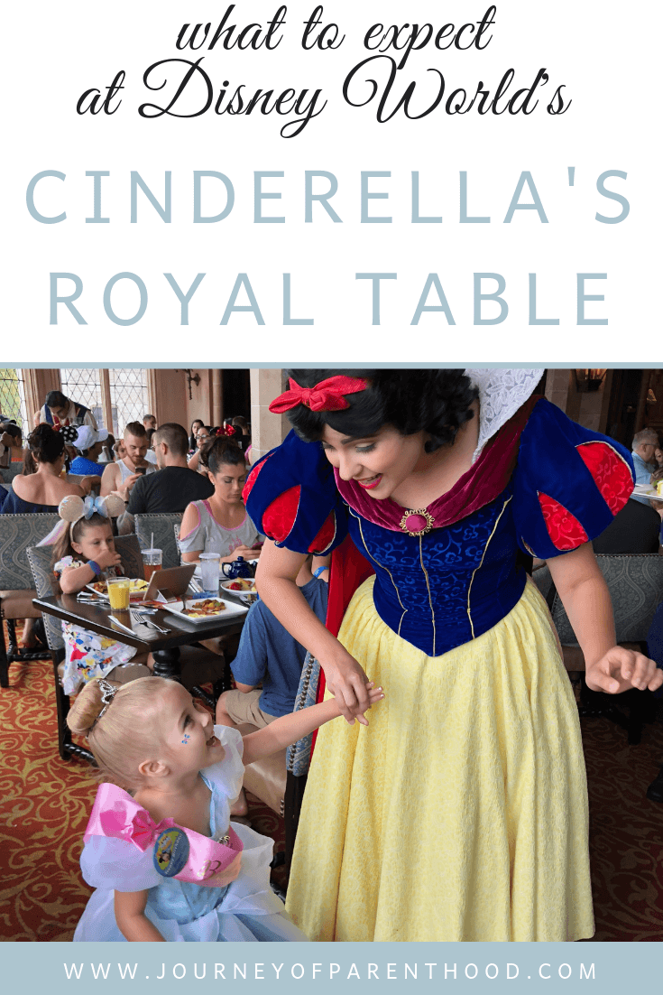 What to expect at Cinderella's Royal Table at Magic Kingdom in Disney World