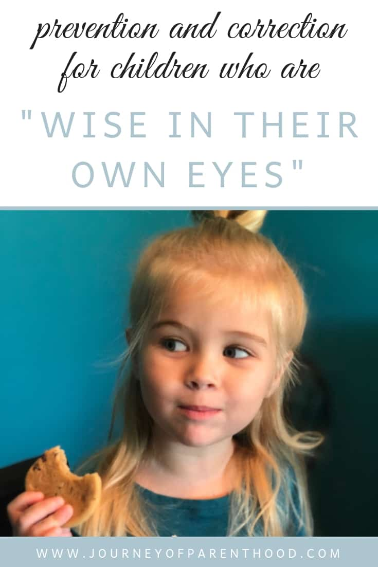 prevention and correction for when children are wise in their own eyes