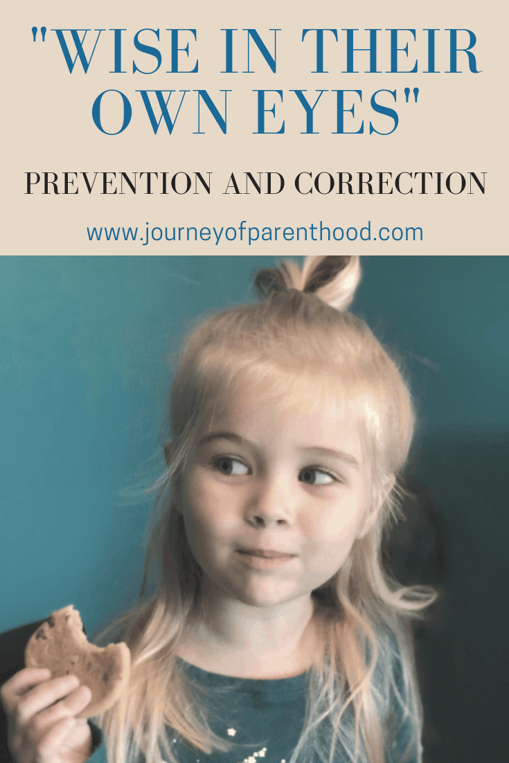 Wise in Their Own Eyes – Prevention and Correction