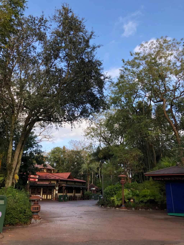 MLK Disney 2019: AK Morning and Epcot