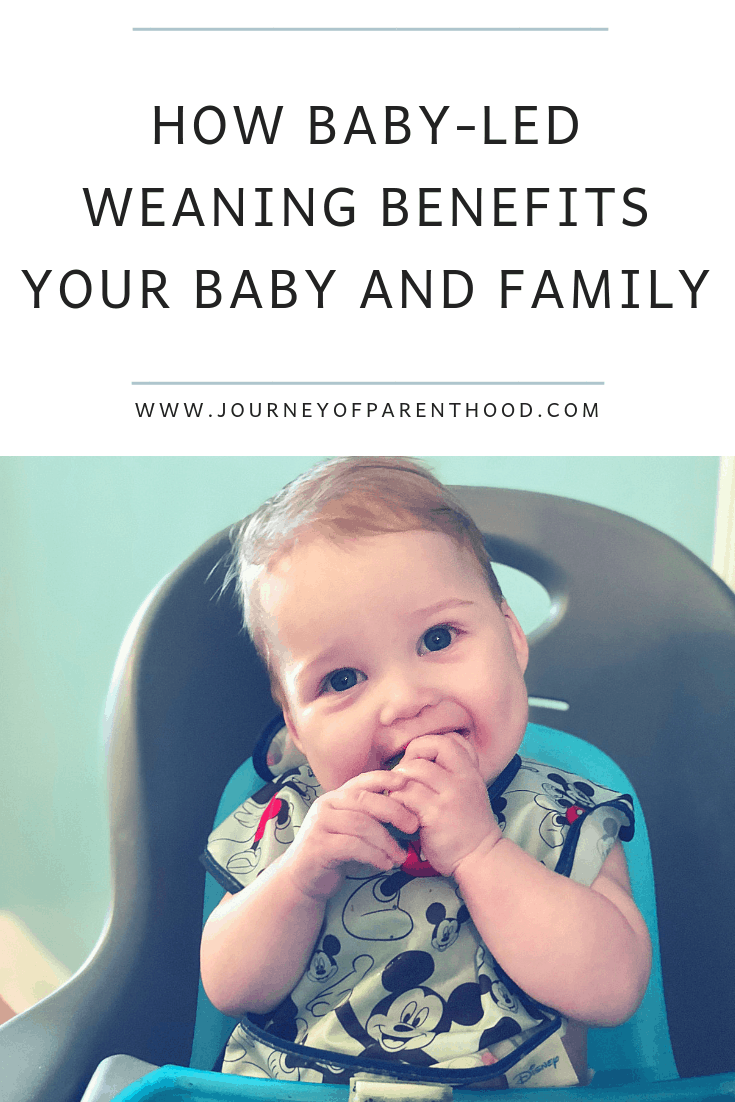 baby led weaning benefits for baby and family