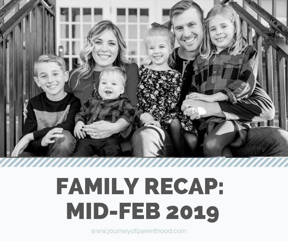 Mid Month Recap: February 2019