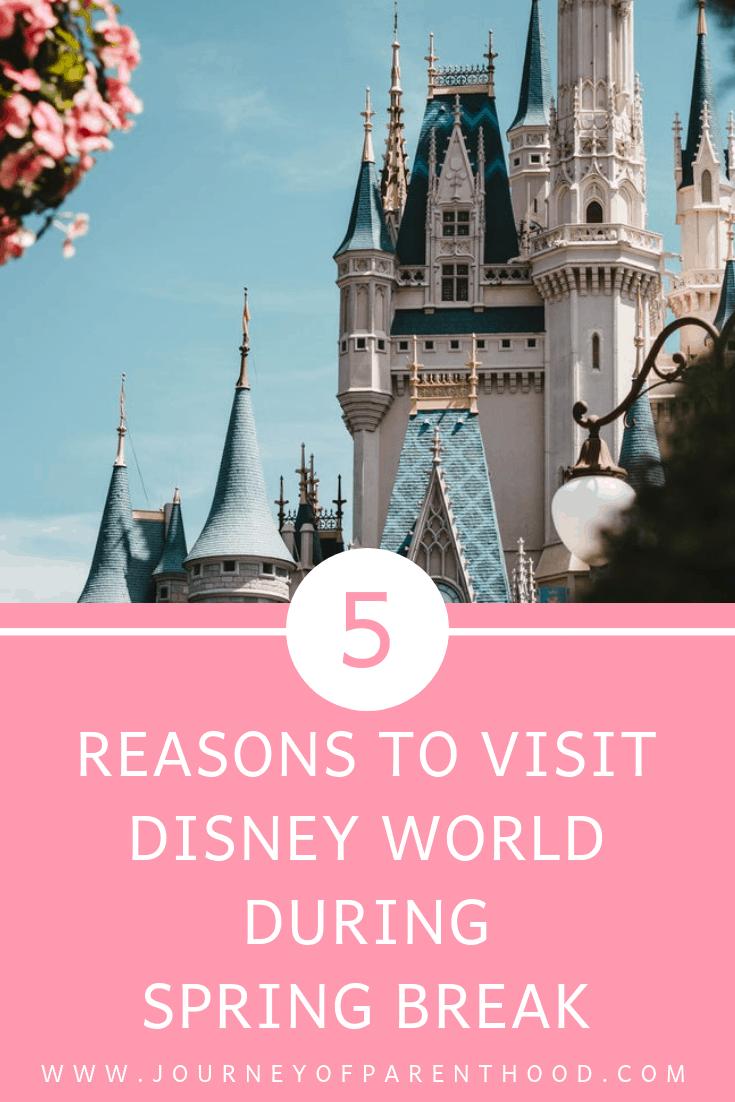 5 reasons to visit Disney World during spring break