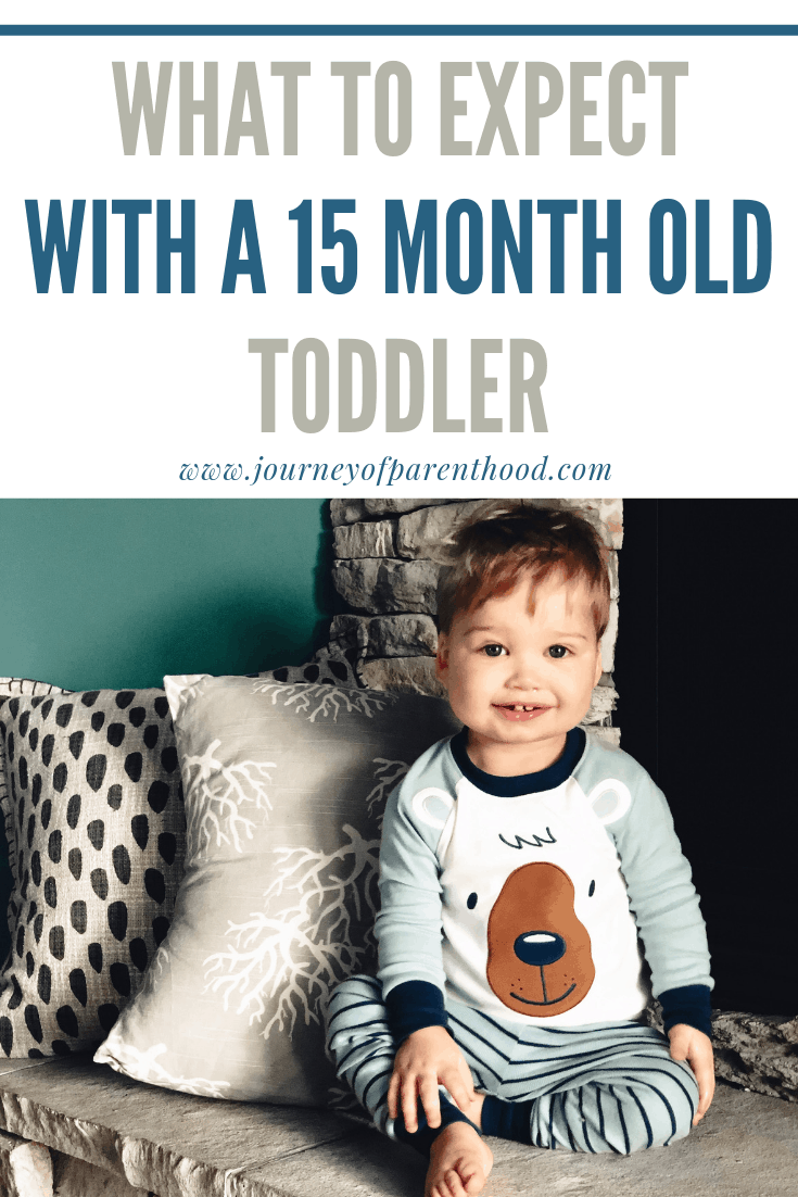 what to expect with a 15 month old toddler