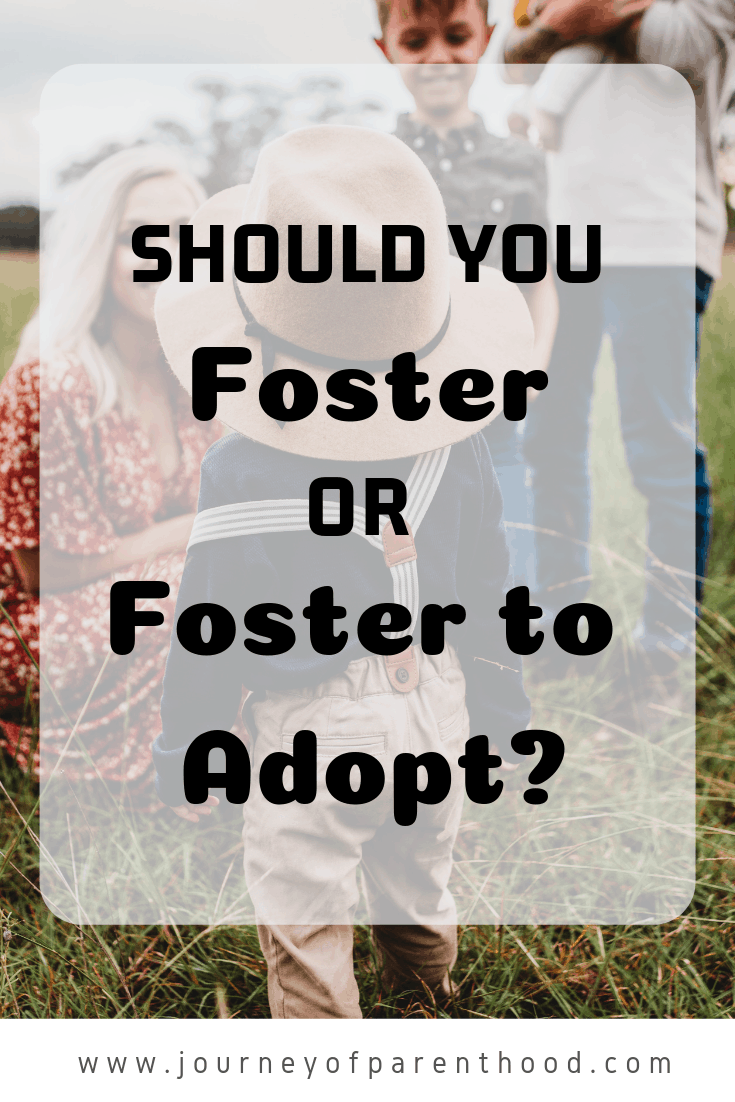 should you foster or foster to adopt?