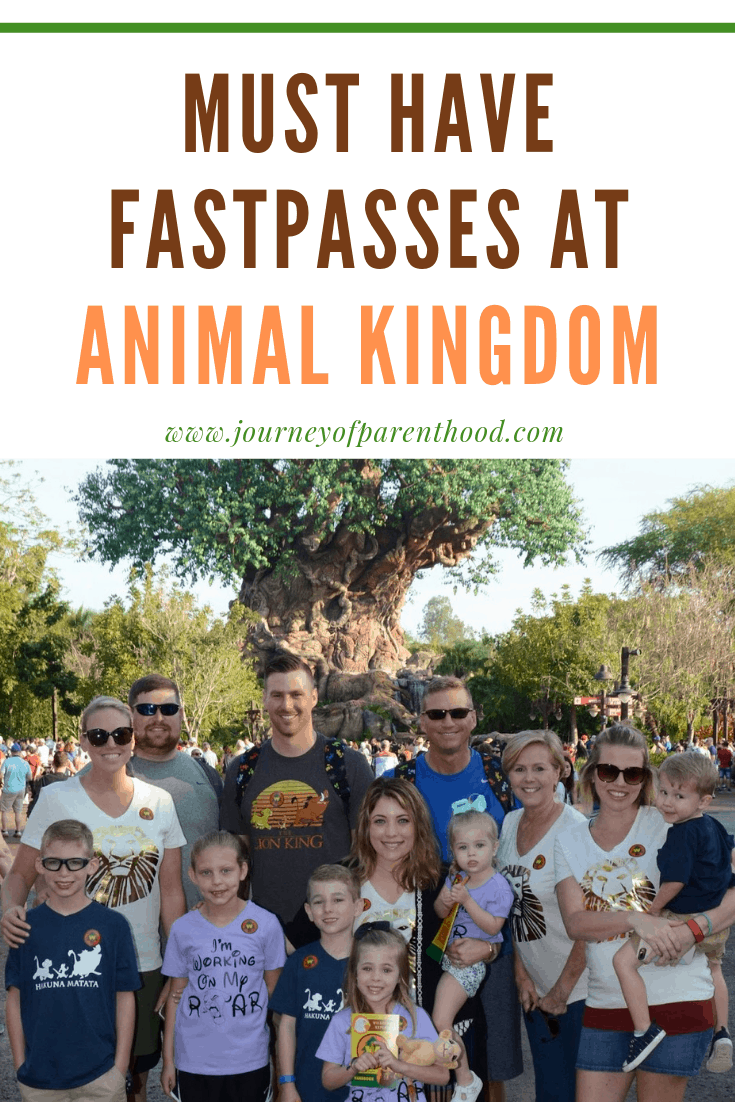 pinable image must have fast passes at animal kingdom