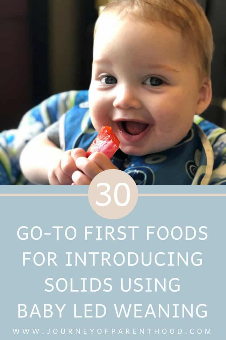 30 go-to first foods for introducing solids using baby led weaning