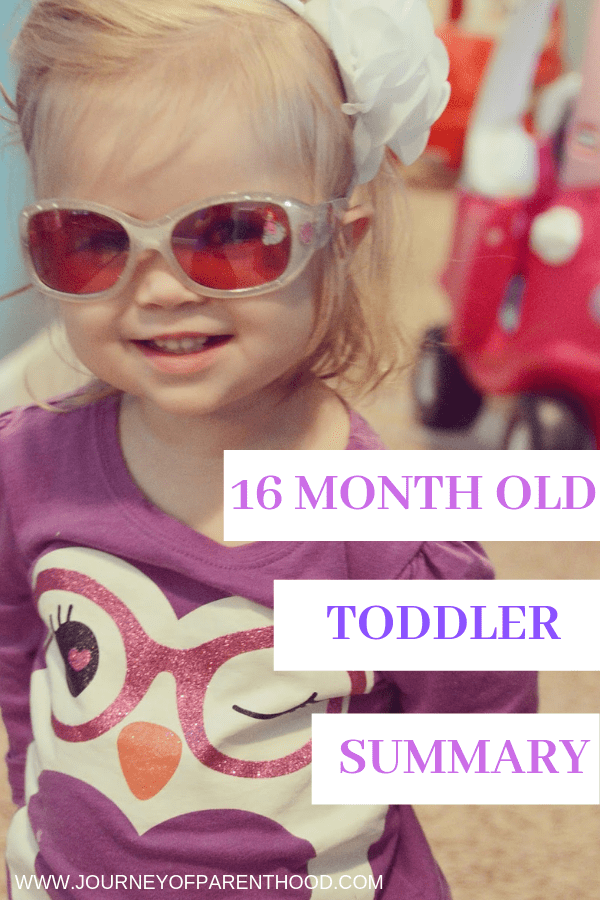 summary of 16 months old