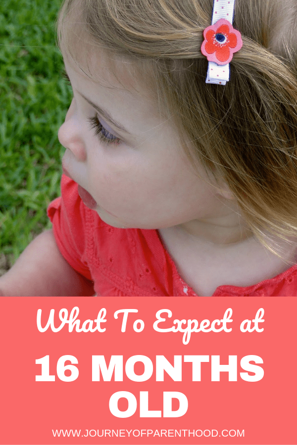 what to expect toddler girl 16 months old