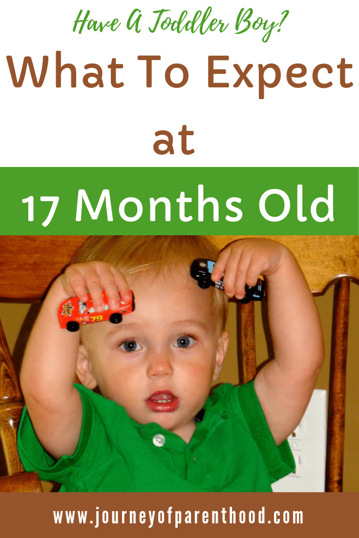 pinable image: what to expect at 17 months old