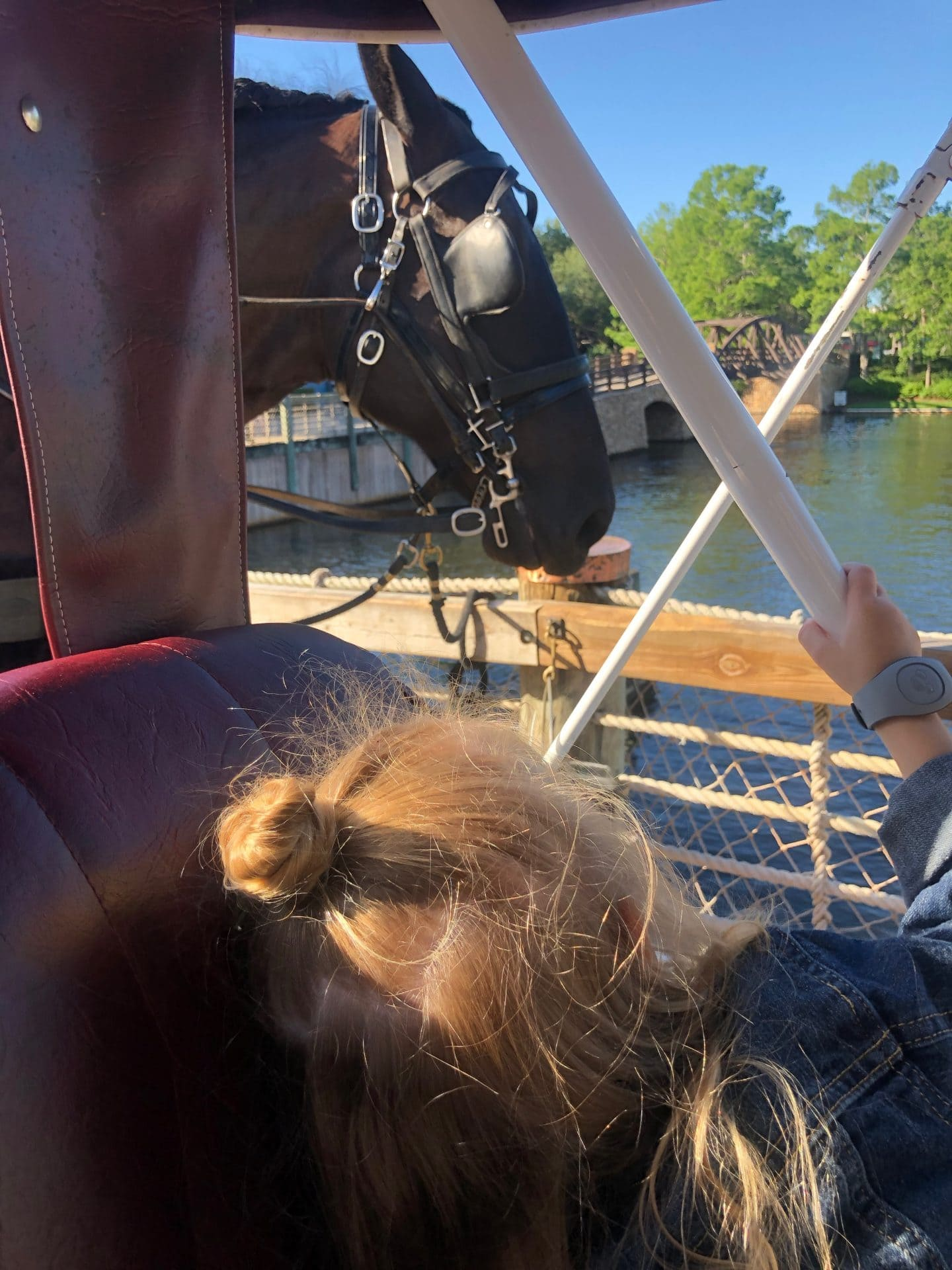 carriage ride at Disney World port orleans riverside