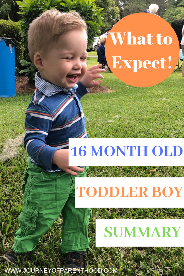 toddler boy summary at 16 months old