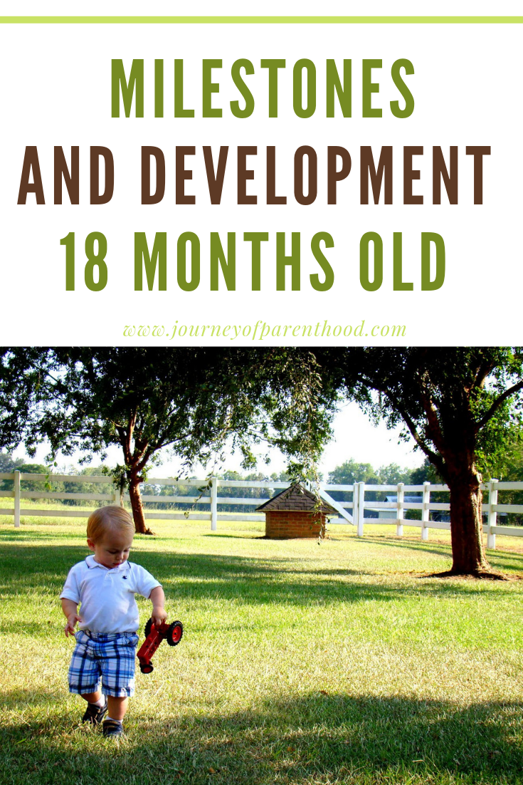 milestones and development at 18 months old
