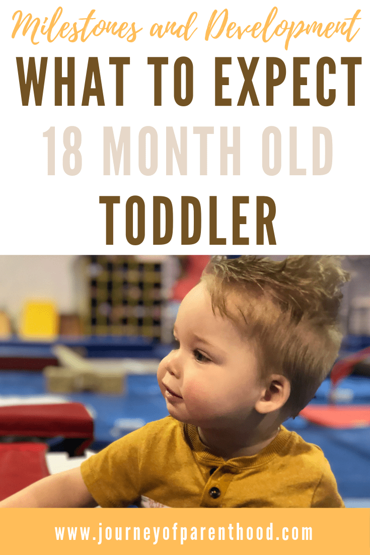 toddler boy at a tumble group. text reads: milestones and development what to expect 18 month old toddler