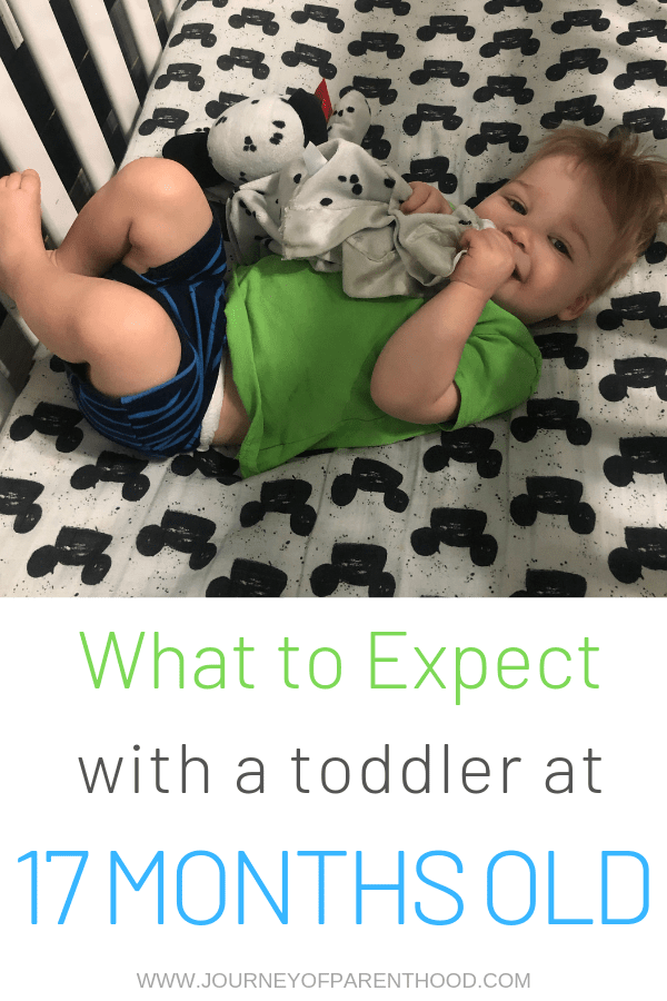 toddler boy in bed with words : What to expect with a toddler at 17 months old
