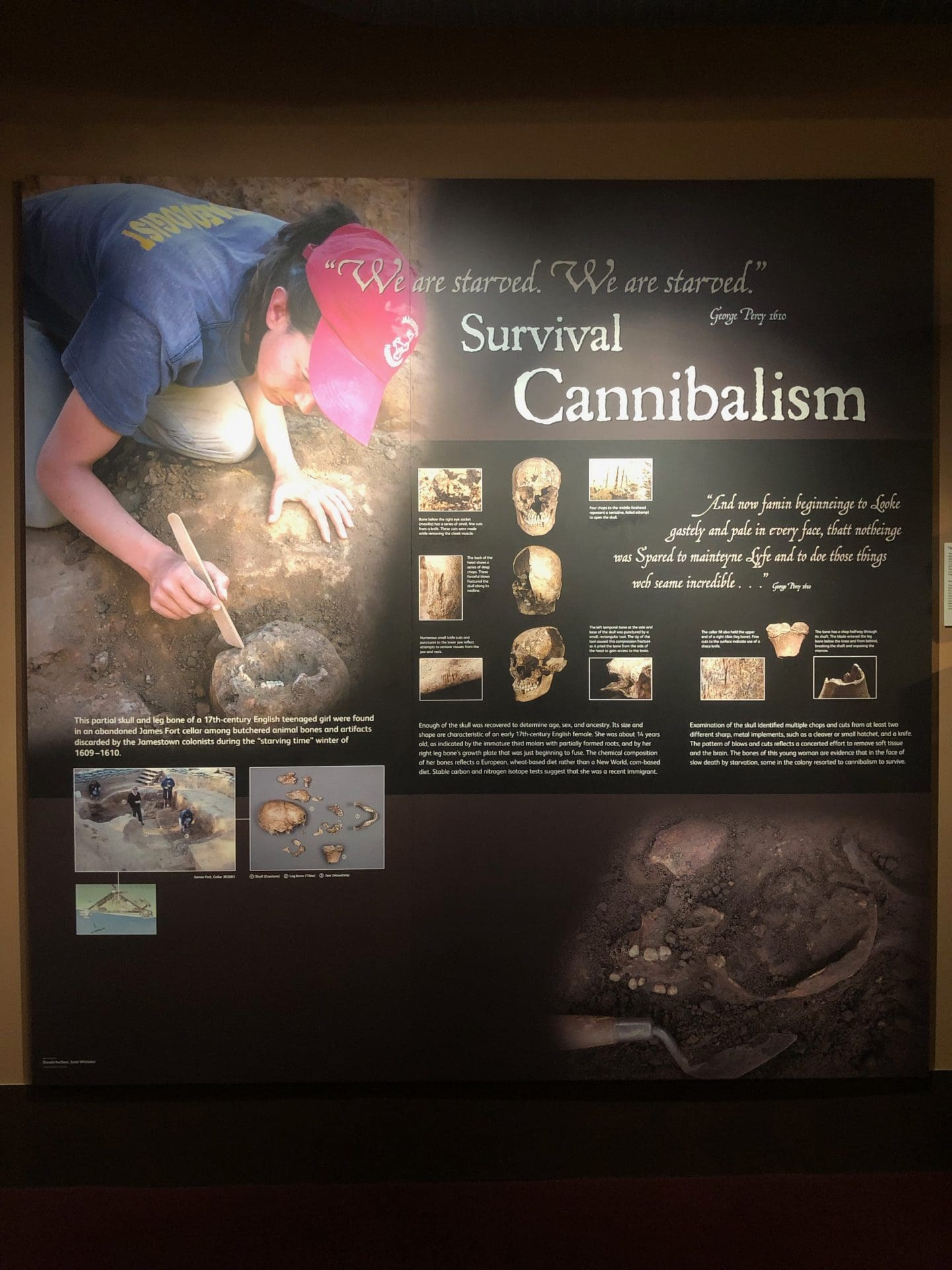 canibilism in historic Jamestown Virginia