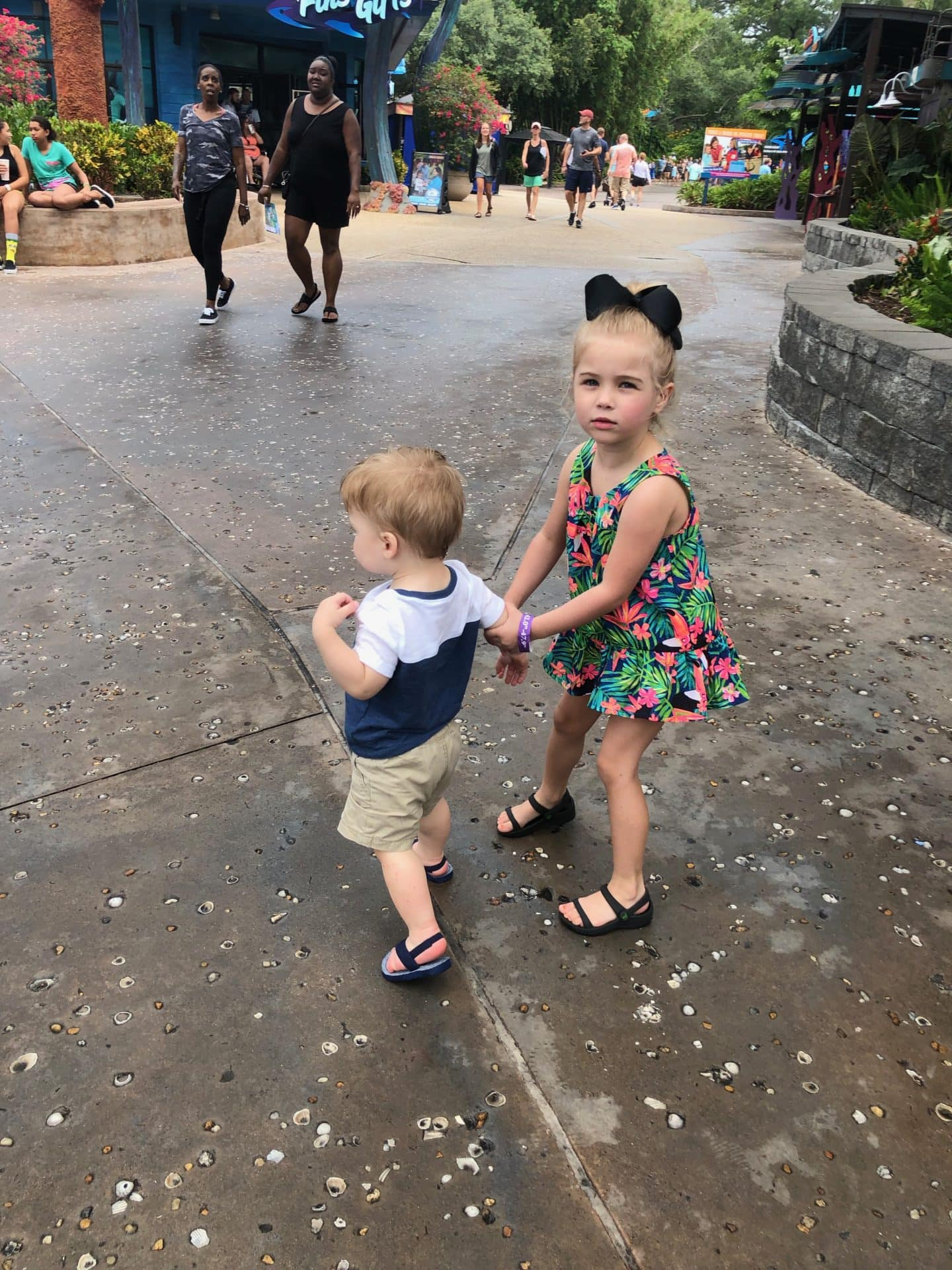 exploring sea world Orlando