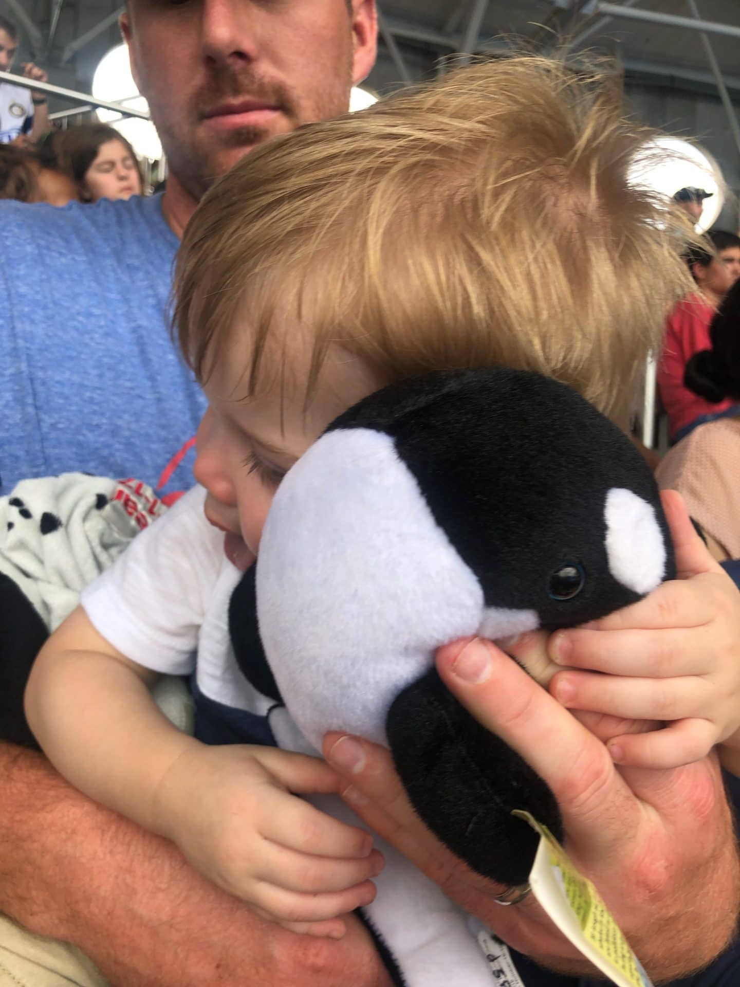 Shamu stuffed animal