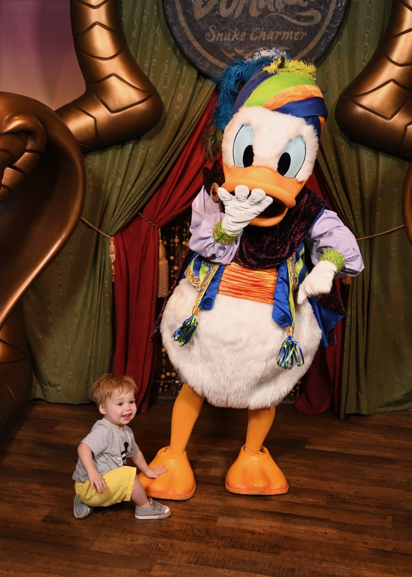 toddler boy meeting Donald Duck at magic kingdom Disney World