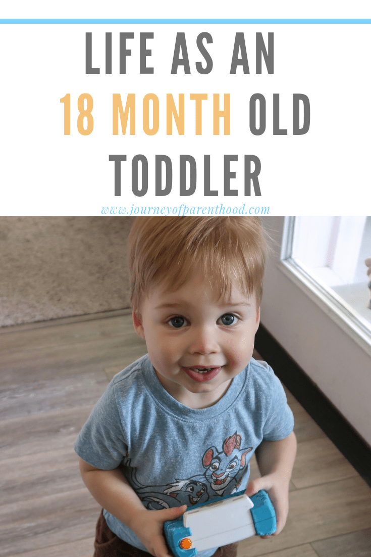 toddler boy holding camera - life as an 18 month old toddler