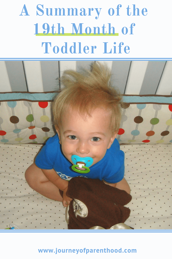 toddler boy in crib with Paci- text says summer of the 19th month of toddler life.