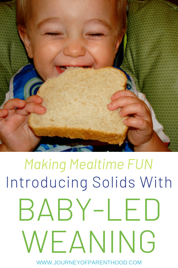 making mealtime fun - introducing solids with baby led weaning