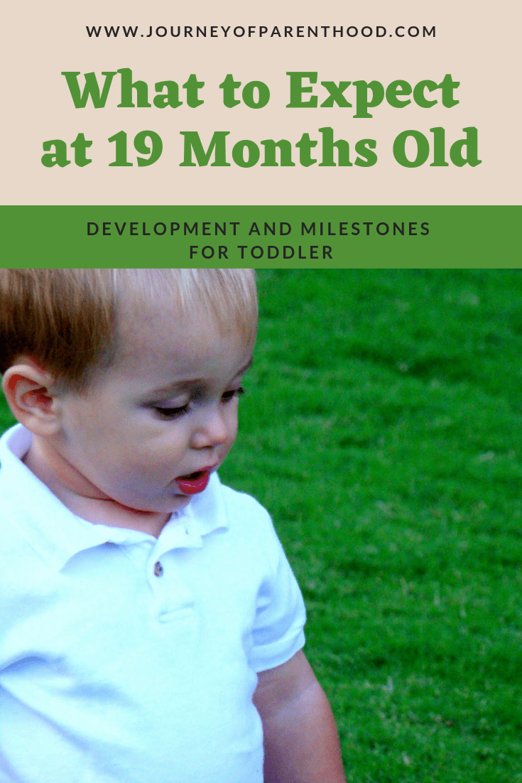 "toddler boy looking at grass - text reads ""what to expect at 19 months old"""