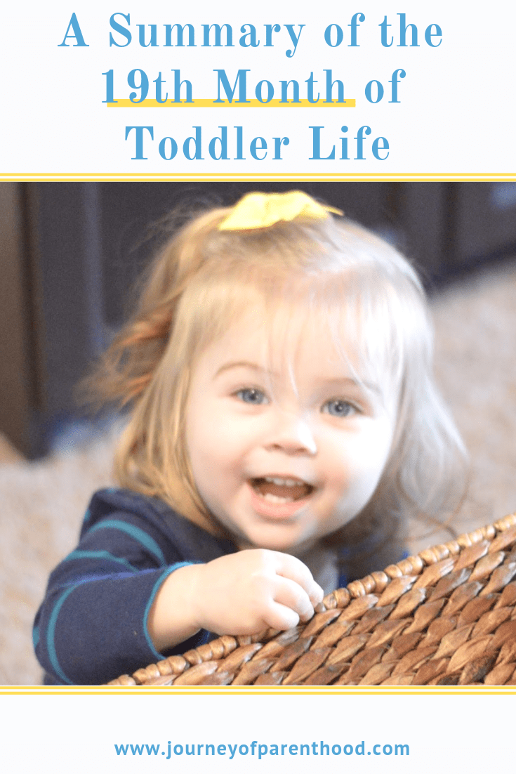 toddler girl big smile words - a summary of the 19th month of toddler life