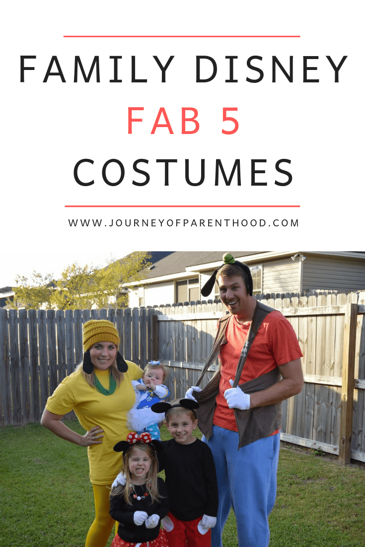 Goofy, Donald Duck, Mickey Mouse, Minnie Mouse and Pluto Family Costumes