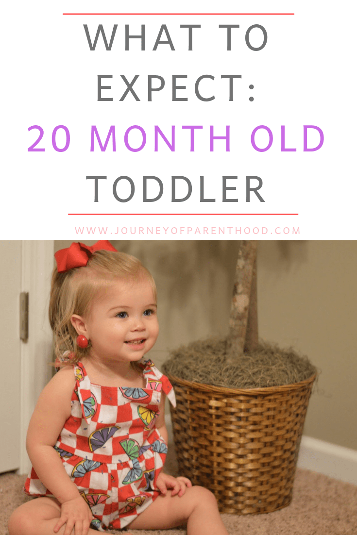 toddler girl - what to expect 20 month old toddler