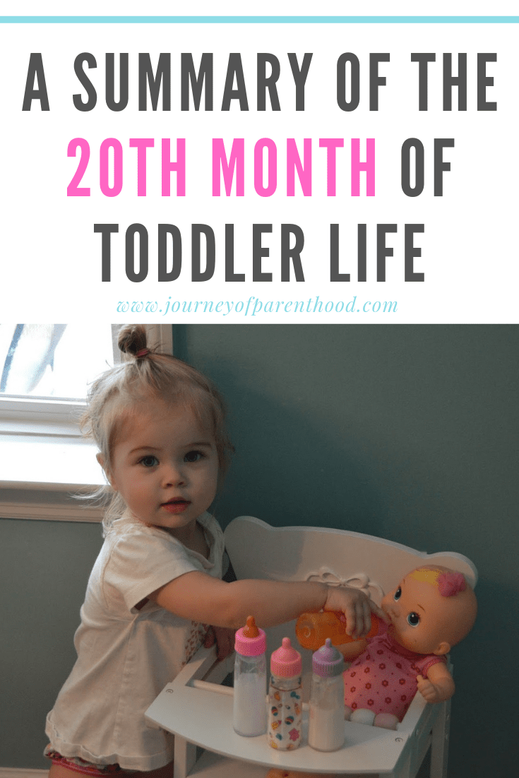 toddler girl feeding baby doll - a summary of the 20th month of toddler life