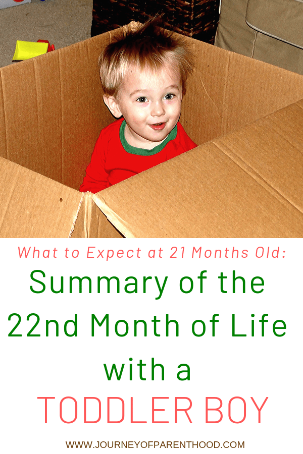Kye Summary of Month 22 and 22 Months Old!
