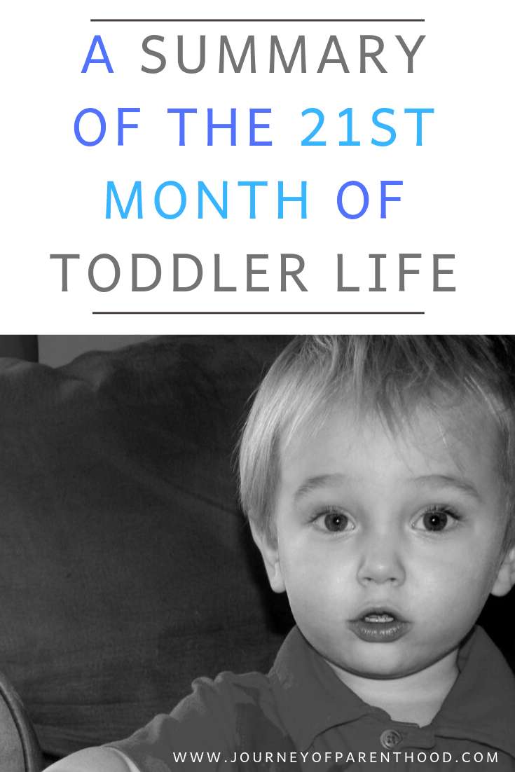 toddler boy 21st month of toddler life summary