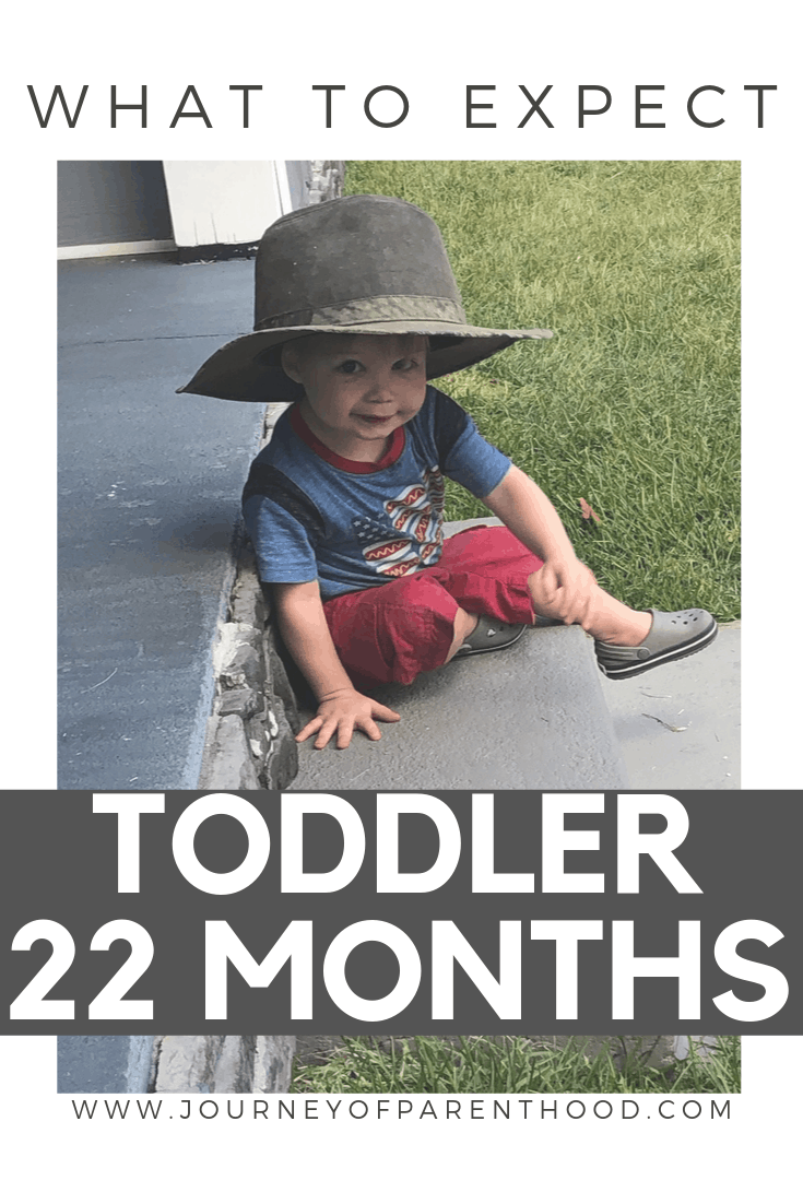toddler boy - what to expect with a toddler
