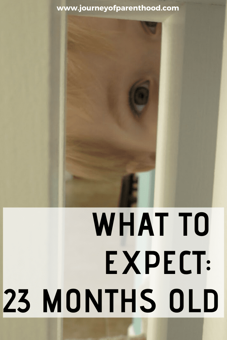what to expect at 23 months old