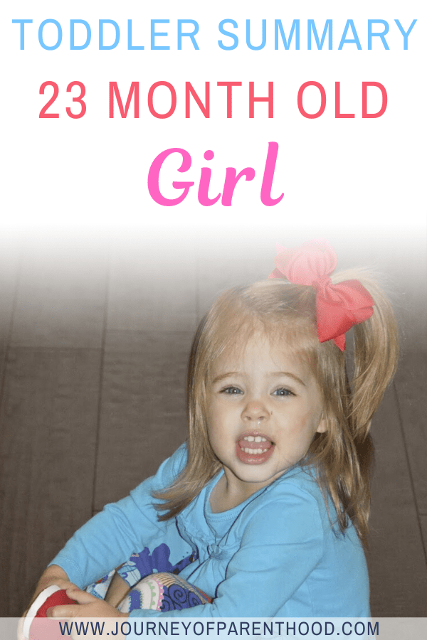 toddler summary 23 month old girl