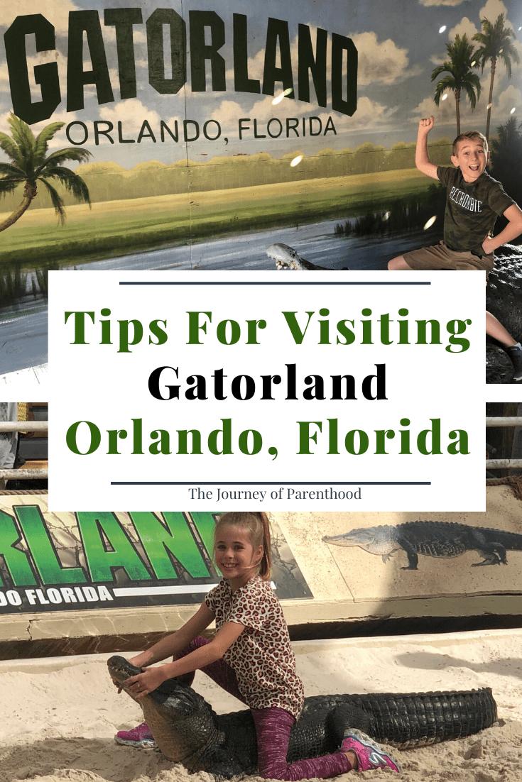 tips for visiting Gatorland Orlando, florida